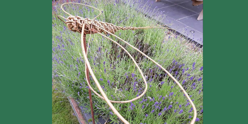 Willow Weaving Dragonfly Sculpture Workshop for adults